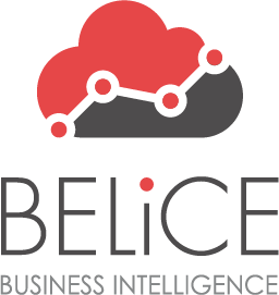 logo Belice business intelligence